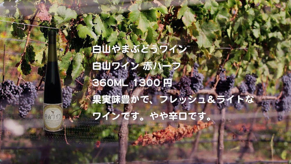 wine-2016-13