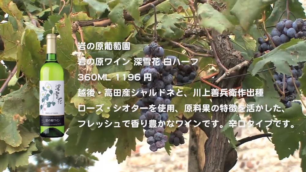 wine-2016-17